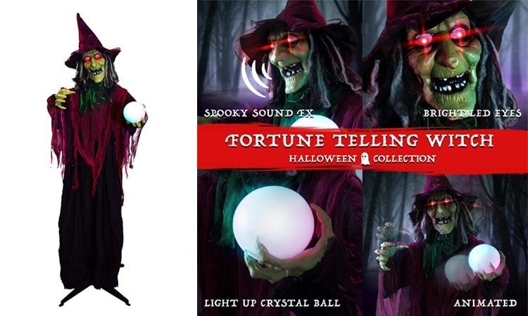 Animated Fortune-Telling Witch