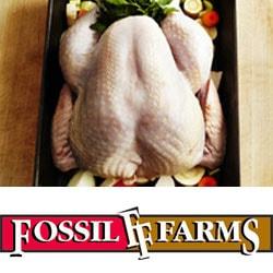 Turkey Whole Bird Special