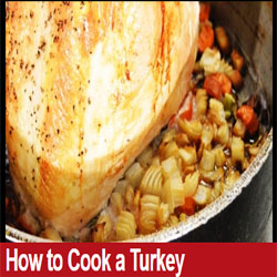 Thanksgiving Special - Learn How to Cook Turkey!