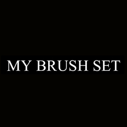 My Makeup Brush Set