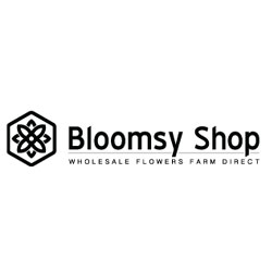 BloomsyShop